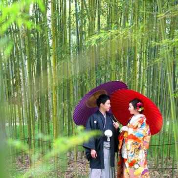竹林の前撮り02