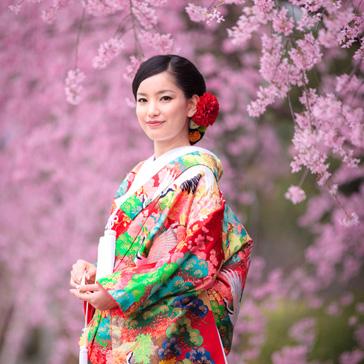 桜フォトギャラリー前撮り01