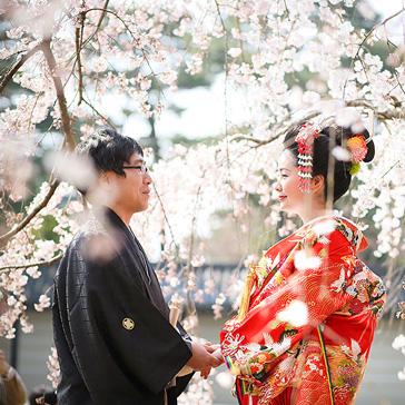 桜フォトギャラリー前撮り03