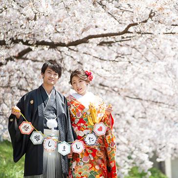 桜フォトギャラリー前撮り04