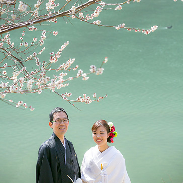 桜フォトギャラリー前撮り05