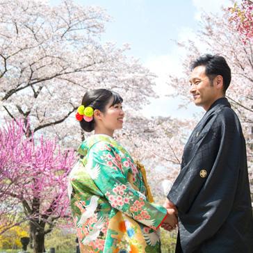 桜の前撮り07