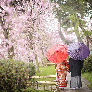 桜の前撮り14