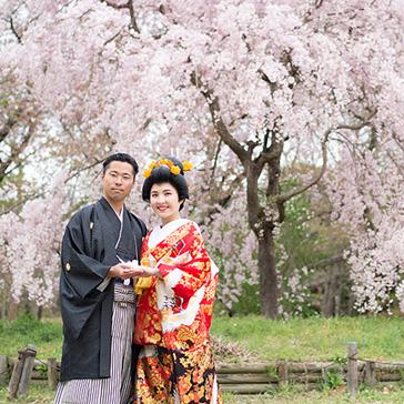 桜フォトギャラリー前撮り14