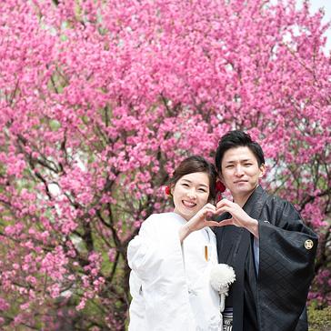 桜フォトギャラリー前撮り15