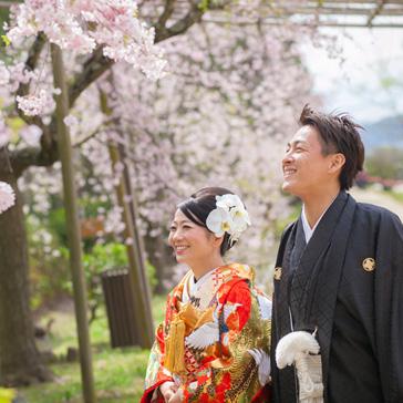 桜フォトギャラリー前撮り11