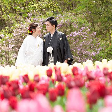 京都府立植物園の前撮り06