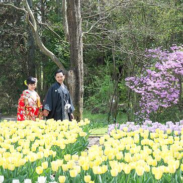 京都府立植物園の前撮り09