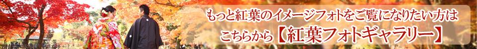 紅葉ギャラリー