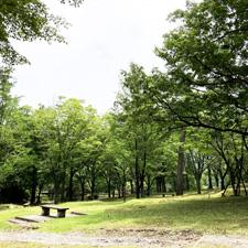 京都の四季前撮り