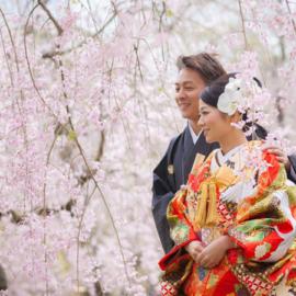 桜シーズンキャンペーン2018