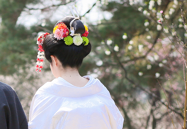 白無垢 小花蝶鳳凰