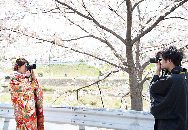 色打掛 赤御所車に鶴のブログ画像