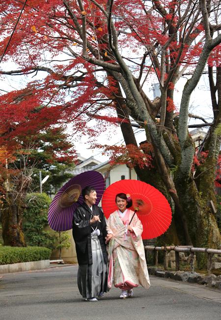 色打掛 桜鶴花篭のブログ画像